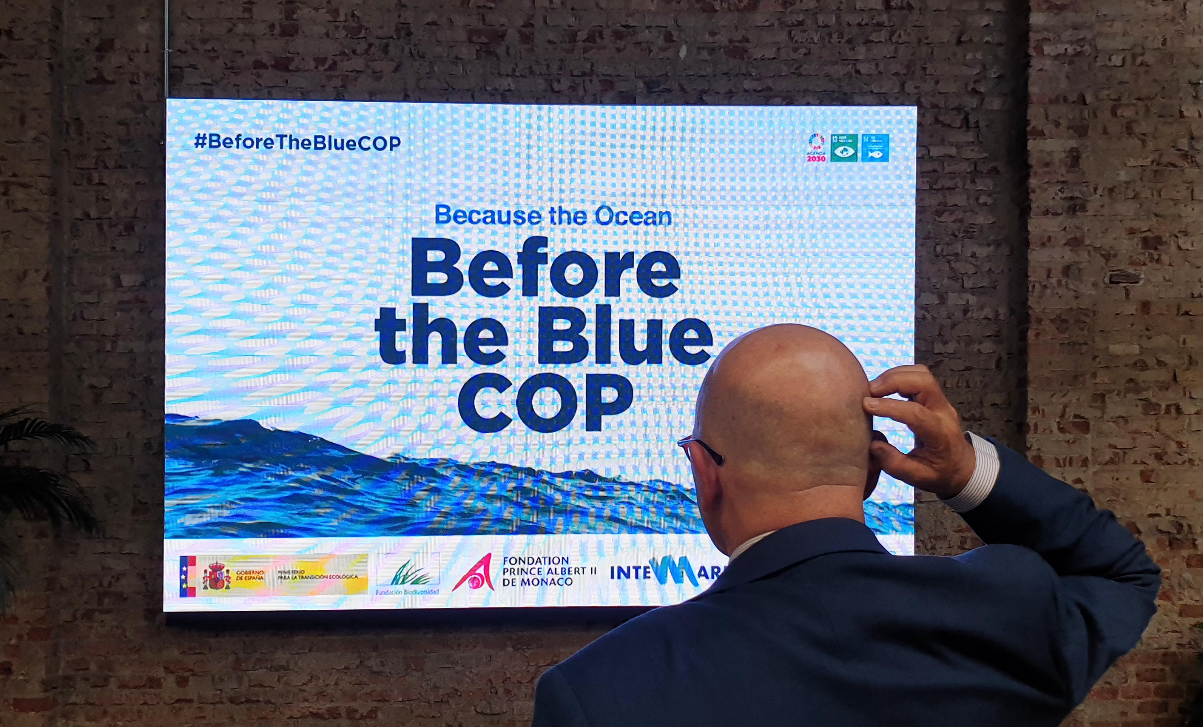 Reports of the Before the Blue COP Workshops Available